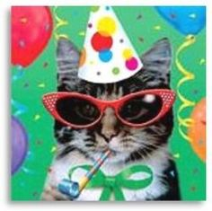 I would love to help you with some great ideas on having a Cat Themed Birthday Party. So lets go and plan a party that will have you purrrring...