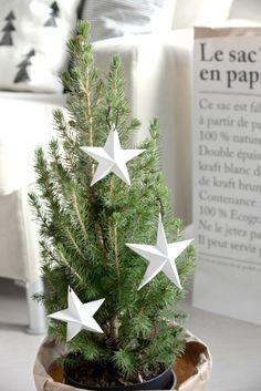 DIY paperitähdet // DIY paper stars