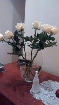 Rosas / N.S.Aparecida 10/2015
