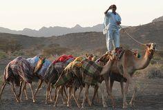 Unattributed photo, Oman
