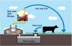 Biogas hay bioga, khí sinh học là một hỗn hợp khí có thành phần chính là methane, cacbonic và một số thành phần khác. Khí biogas có thể xuất hiện ở điều