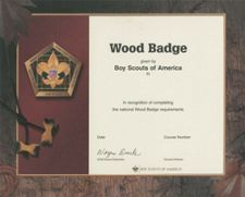 Boy scout certificate template review at kaboodle for District award of merit certificate template