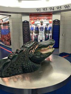 The Swamp! University Of Florida, Florida Gators, Gator Football, Bait, Locker, Sports, Room, Hs Sports, Bedroom