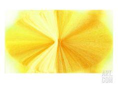 NIRVANA?Golden Violet Giclee Print by Masaho Miyashima at Art.com