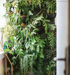 No hall de serviço do apartamento, o morador montou um jardim vertical com diferentes espécies de plantas.