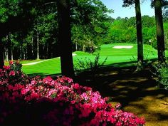 Augusta National, Augusta, Georgia- If you ever have the chance to attend the Masters Golf Tournament, go for it!! I am not a major golf fan, but this place is like being in another world. It is beautiful!!
