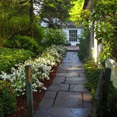 Walkway idea and white flower border design