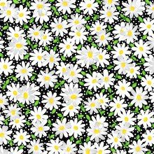 Daisies On Black Fabric
