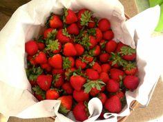 obst gesund erdbeeren aufbewahren