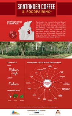 Let's take look at the foodpairing tree for Santander Coffee. Visit www.colombiancoffeehub.com for more info