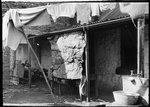 Collingwood slums, rear of 5 Hood Street Australia Day, Victoria Australia, Melbourne Australia, Melbourne Suburbs, The 'burbs, Melbourne Victoria, Slums, Historical Pictures, Women In History