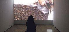 Uno de los vídeos que podrán verse en el Área 1 y que forman parte de la colaboración del centro con el Festival Loop de Barcelona. Foto: Miquel Massutí