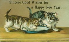 vintage Happy New Year postcard cats