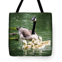 Tote Bag featuring the photograph Canada Goose And Gozlings by Michael Johnk