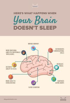 Not getting enough sleep can have serious consequences on your health, including impaired memory, increased stressed and can even shrink your brain. Here's what happens to your brain when you're sleep deprived. Natural Antibiotics, Sleep Apnea, Sleep Deprivation Effects, Brain Health, Key Health, Pms, Health Articles, Your Brain, Health Problems
