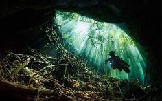 """Mergulhador """"voador"""" e urso polar estão entre as fotos de viagem do ano - Fotos - UOL Viagem"""