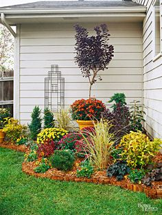 Create a beautiful corner garden with warm hues of red and yellow. Add some dark foliage to blend in and texture.