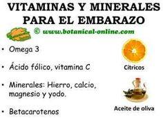 NECESIDADES DE VITAMINAS Y MINERALES EN EL EMBARAZO Y LACTANCIA