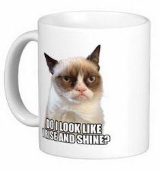 Grumpy Cat Mug for $17.95 I seriously must have this mug!