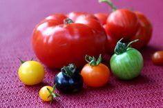 Eigenes Gemüse, knackig frischer Salat, die geliebten Tomaten oder Gurken und etwas Obst, neben all den schönen Blühpflanzen lohnt es sich, ein paar – oder mehr Töpfe mit so manchem essbaren Pflänzchen zu bestücken. Salat oder Radieschen im Blumenkasten, die eine oder andere Tomate, Gurke und Zucchini – Vieles gedeiht prima im Topfgarten. Manches sogar besser! Bei Tomate, Zucchini und Gurke ha ...