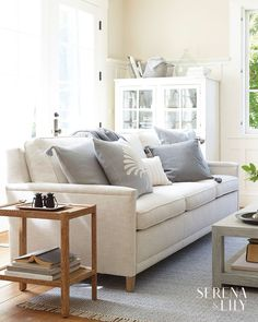 Living Room Furniture Decor