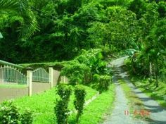 Trinidad and Tobago Maraval Phase II Woodbine Gardens - Sloping freehold land with some approvals