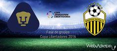 Pumas vs Táchira, Fecha 4 de la Libertadores 2016 ¡En vivo por internet! - https://webadictos.com/2016/03/17/pumas-vs-tachira-libertadores-2016/?utm_source=PN&utm_medium=Pinterest&utm_campaign=PN%2Bposts