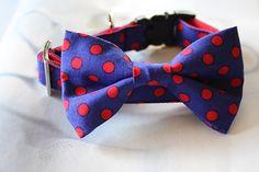 Blue Red Polka Dot Bow Tie Dog Collar by Miasclosetshop