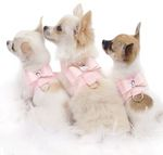 <3 Chihuahuas ~ and the one in the middle looks very much like Pixie!