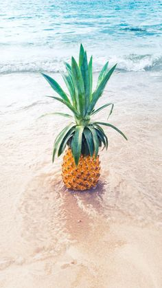 Pineapple in the Ocean - Wallpaper for Smartphone.