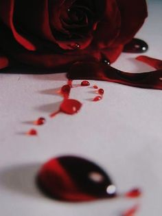 Blood Rose by draqulyn on DeviantArt Aesthetic Roses, Red Aesthetic, Character Aesthetic, Aesthetic Photo, Blood Wallpaper, Rose Wallpaper, Rose Blood, Blood Art, Dark Photography