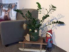 Wir gehen neue Wege in der Weihnachtsdeko. Keine lästigen Tannennadeln im Teppichboden. Danke liebe Natascha! Elf On The Shelf, Holiday Decor, Home Decor, Branches, Thanks, Love, Decoration Home, Room Decor, Home Interior Design