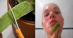 She Rubbed Aloe Vera on Her Face, What Happened After 15 Minutes Will Surprise You! - - - The health benefits of aloe vera are not restricted to alternative . Aloe Vera Cara, Aloe Vera For Skin, Feuille Aloe Vera, Best Beauty Tips, Beauty Hacks, Tips Belleza, Healthy Skin, Healthy Food, Beauty Secrets