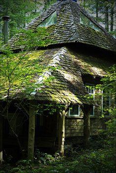 fairy cottage by daisy sharrock, via Flickr