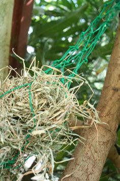 How to Make a Hay net using bailing twine. it's so great because i've so much twine. :)