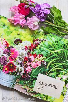 http://ofspringandsummer.blogspot.co.uk/2014/04/book-review-of-cut-flower-patch-by.html