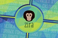 Check out Zira 35% Off by Artcity Fonts on Creative Market