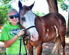Rebel - Hearts & Horses