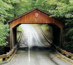 Pierce stocking covered  bridge.Michigan