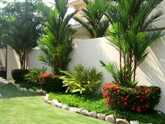Backyard Landscaping Trees Plants Ideas For 2019 Palm Trees Garden, Palm Trees Landscaping, Florida Landscaping, Tropical Landscaping, Front Yard Landscaping, Tropical Patio, Tropical Gardens, Small Gardens, Outdoor Gardens