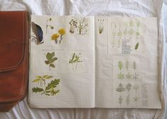 make your own beautiful book with the things you love
