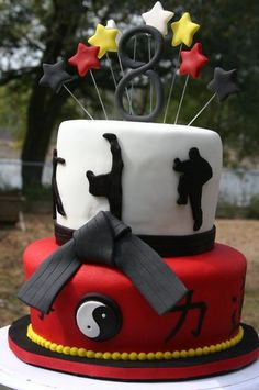 Karate Cake!!! Would put tang soo do and american flag on there though!! Should do!