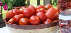 Determinate Tomato Varieties You Can Depend On