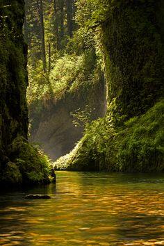 Eagle Creek, By Ross Murphy.