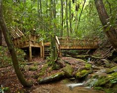 Deck over the creek! That's a sweet idea!
