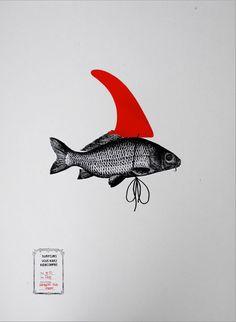 Poisson déguisé en requin #art #rouge
