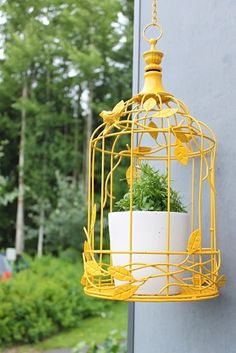 Bird cage painted in yellow!