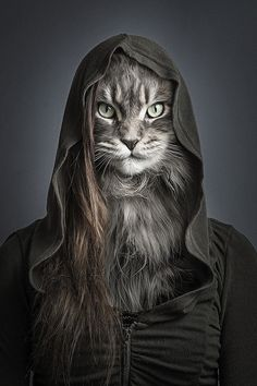 www.2rmin.com - Cats Dressed As Their Owners — 2rmin's Finest Selection Of Cool Stuff