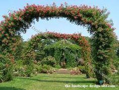 Image result for garden design arches