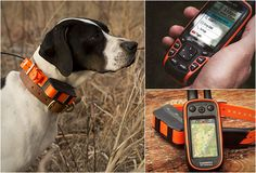 DOG TRACKING SYSTEM | Incase you lose your dog.. I NEED THIS!